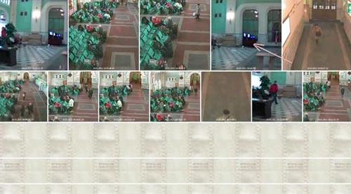 videoanalitica36.jpg Через стекло спецлабовский детектор засек силуэт человека